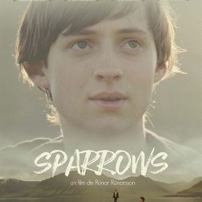 En bref : SPARROWS de RúnarRúnarsson