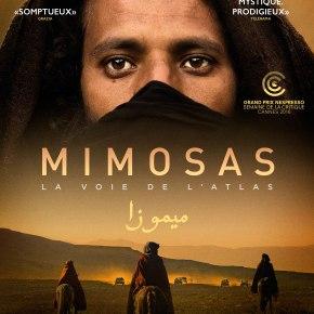 En bref : MIMOSAS, LA VOIE DE L'ATLAS d'OliverLaxe